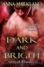 Dark and Bright by Anna Markland
