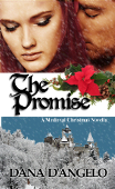 The Promise by Dana D'Angelo - a medieval romance novella